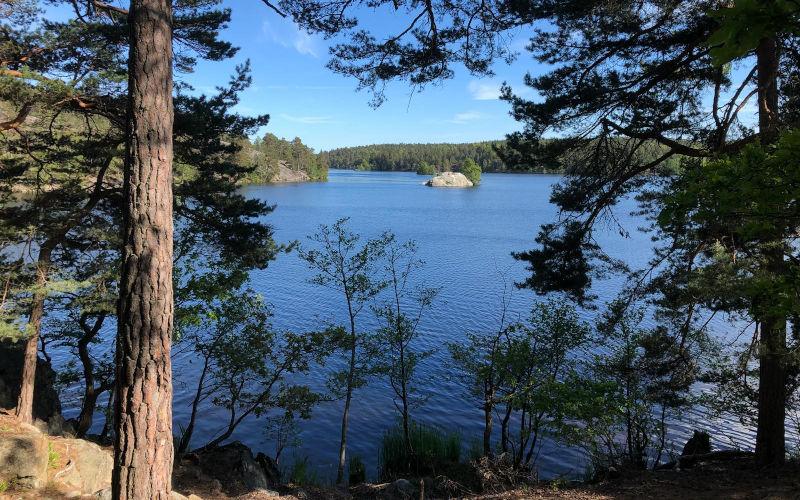 5 cose da fare a Stoccolma, un escursione al parco di Hellasgården