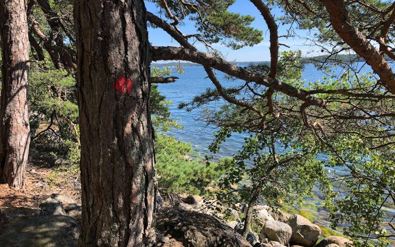 Trekking a Stoccolma